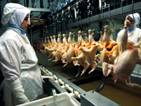 Rusya'ya ihracat kanat'lanacak