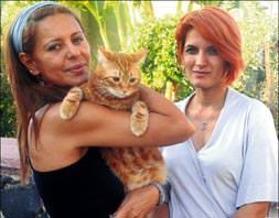 Komşuya 22 bin tl'lik kedi davası