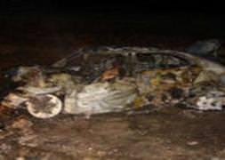 Tır şoförü uyuyarak bir aileyi yaktı!
