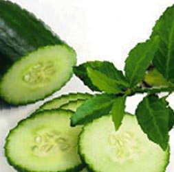 Pürüzsüz cildin ilacı salatalık