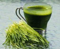 Yeni sağlık kaynağı çim suyu