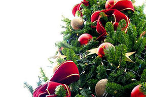Yılbaşı Ağacı Caiz Mi Takvim 25 Aralık 2010