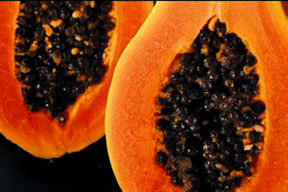 Sindirim dostu Papaya