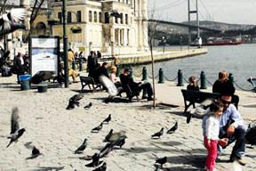 İstanbul 25 milyar lira harcayacak