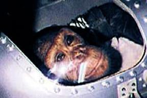 Uzaylı şempanze