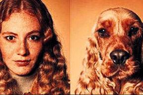 İnsan sahibi köpekler