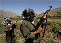 PKK köy muhtarı ve kardeşlerini kaçırdı