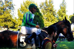At yarışının çivisi çıktı