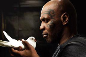 Tyson huzuru İslamda buldu