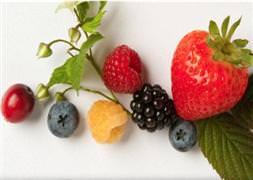 Kansere Karşı Savaşan Iki Meyve Takvim 26 Nisan 2012