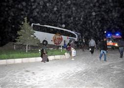 Yolcu otobüsü kuma çarptı: 30 yaralı