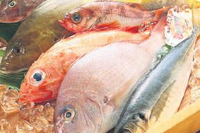 Balığı ihmal etmeyin