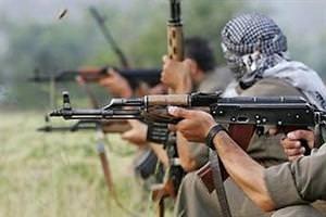 PKK sivil vatandaşı öldürdü