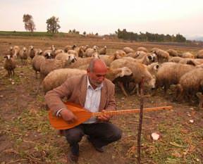 Gündüz çoban gece sanatçı