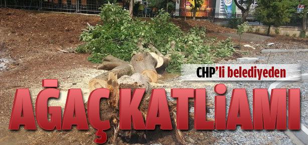 CHP'li belediye ağaçları kesti