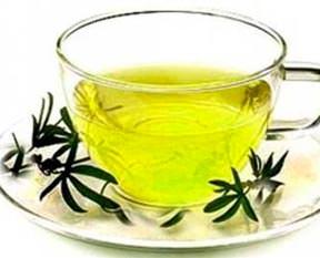 Yeşil çay varisi önlüyor
