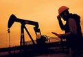5 ilçe petrol zengini olacak