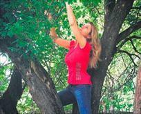 Ağaca daldı