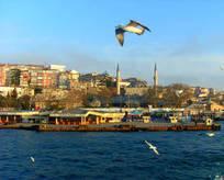 Boğaz'da kentsel dönüşüm başlıyor