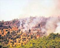 250 hektar kül oldu
