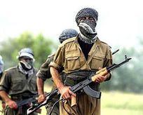 Şanlıurfa'da 8 PYD'li terörist yakalandı
