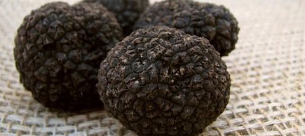 Bakanlık Siyah Elmas üretimi Için Düğmeye Bastı Takvim 20
