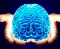 Rüya gören beyin hafızayı koruyor