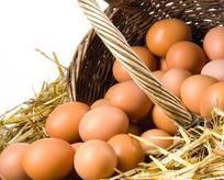 Organik yumurta oyunu bozuluyor!
